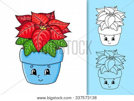 Poinsettia Flower In A Pot. Set Of Vector Illustrations Isolated On White And Colored Background. De