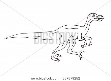 Vector Hand Drawn Doodle Sketch Velociraptor Dinosaur Isolated On White Background