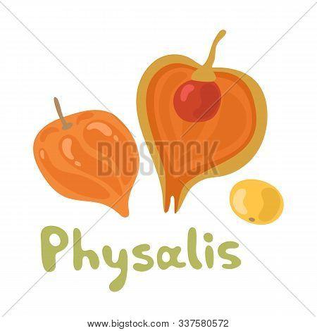 Cape Physalis Fruit Icon, Fruit With Husk. Physalis Alkekengi, Bladder Cherry, Japanese Lantern, Str
