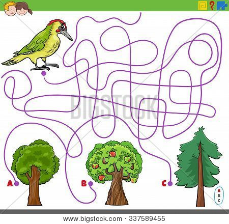 Cartoon Illustration Of Lines Maze Puzzle Activity Game With Woodpecker Bird Animal Character And Tr