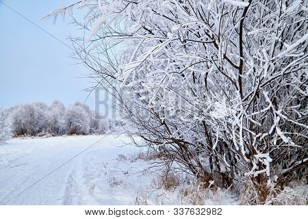 Snowy Road Among The Trees Covered With Frost On A Winter