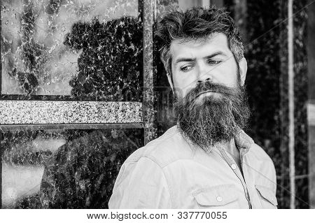 Masculinity And Manliness. Confident Posture Of Handsome Man. Guy Masculine Appearance With Long Bea