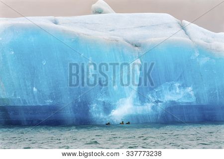 Blue Large Iceberg Ducks Diamond Beach Jokulsarlon Glacier Lagoon Vatnajokull National Park Iceland.