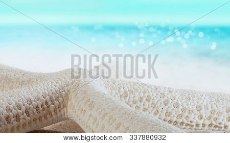 Starfish on the sea shore in the sand. Summer on a tropical beach. Macro photo.