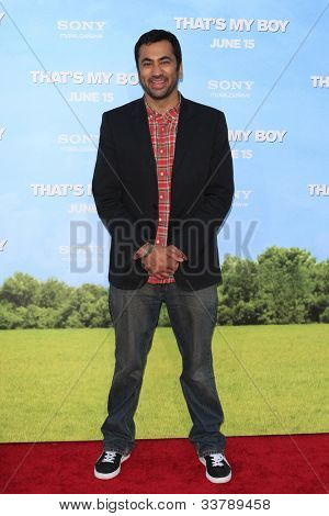 LOS  ANGELES- JUN 4: Kal Penn at the premiere of Columbia Pictures' 'That's My Boy' at the Regency Village Theater on June 4, 2012 in Los Angeles, California