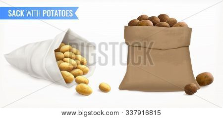 Sack With Potatoes Realistic Set With Spuds Of Different Fluke And Colour With Text And Bags Vector