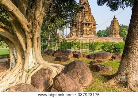 Old Tree In The Temple Complex Of Khajuraho, India