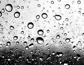 Collection of the textures (Drops of rain on the plastic black and white picture) poster