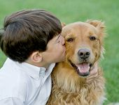 Little Boy Giving a Kiss to His Dog poster
