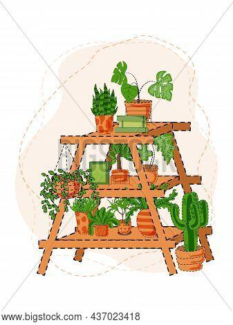 Houseplants On Shelf. Flower In Pot, Potted Houseplant And Plant Pots. Home Plants On Shelves. Garde