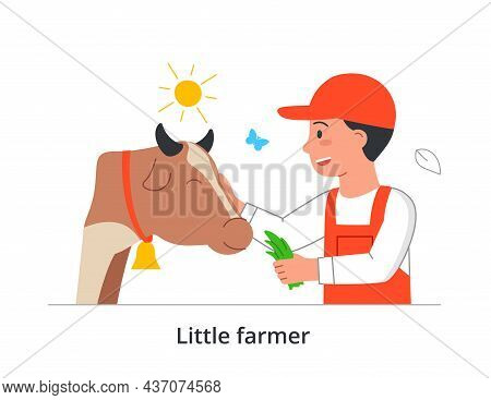 Little Farmer Concept. Man Feeds Cow With Clover Leaves. Taking Care Of Animals. Children Do Housewo