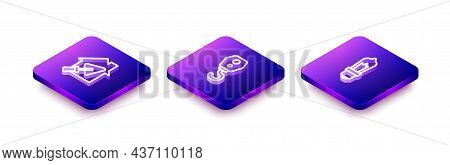 Set Isometric Line House With Trowel, Crane Hook And Light Bulb Icon. Vector