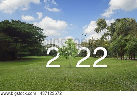 2022 White Text With Growing Tree On Green Grass And Trees In Public Park, Happy New Year 2022 Ecolo