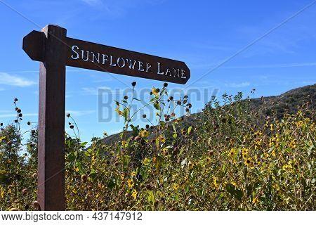 OAK GLEN, CALIFORNIA - 10 OCT 2021: Sunflower Lane sign in the Wildlands Conservancy Oak Glen Preserve in the foothills of the San Bernardino Mountains.