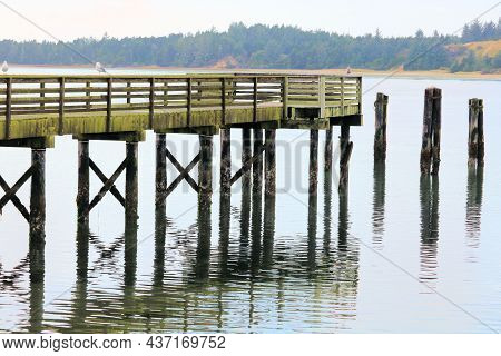 Rustic Wooden Fishing Pier Weathered From Frequent Storms Taken In Coos Bay, Or