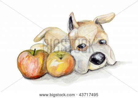 Toy Teddy Dog And Apples