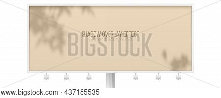 Billboard With Shadow Of Tree Branches. Shadow Overlay Effect. Beige Vector Background For Branding