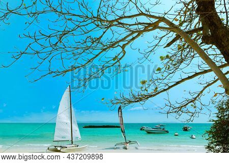 Tropical Landscape At Koh Lan Is A Tropical Island In The Thai Sea With Boats And Beautiful Tropical