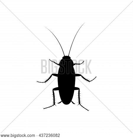 Cockroach Insect Icon Isolated On White Background, Pest Bug Silhouette Top View. Flat Body Parasite