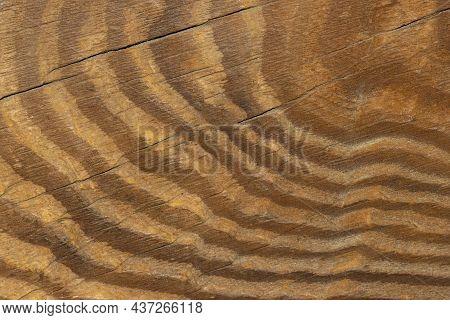 Old Weathered Wood Surface, Vintage Background For Design