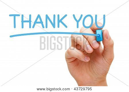 Hand writing Thank You with blue marker on transparent wipe board. poster