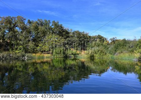 Red-Wing Pond at the Wildlands Conservancy Oak Glen Preserve in the foothills of the San Bernardino Mountains.