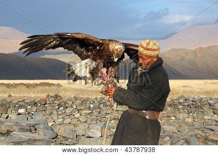 Mongolei - 25 Juli: der hochrangige mongolische Reiter In traditioneller Kleidung mit Steinadler während T