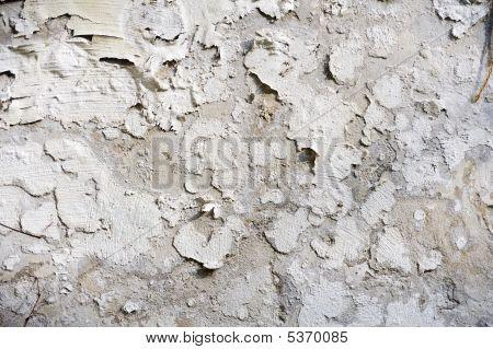 Pealing Paint - Wall