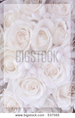 Pink Rose Stationary
