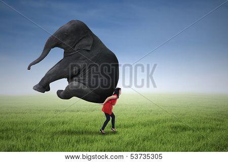 Beautiful Woman Lifting Heavy Elephant
