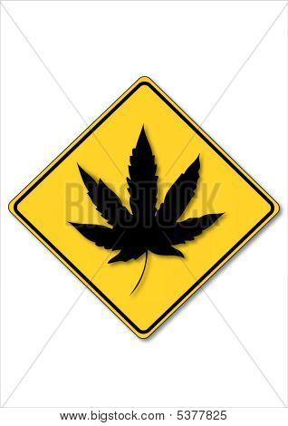 Cannabis - Hemp