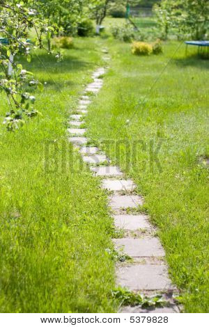 green lush lown with curve path from bricks poster