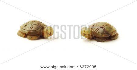toy turtles