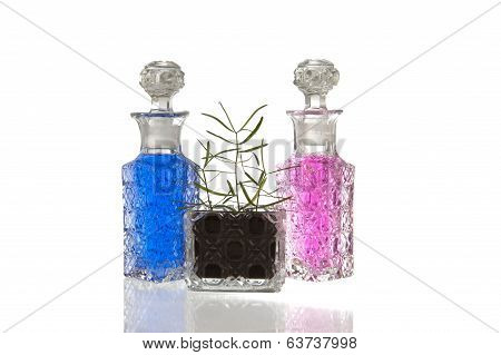 Blue Pink Glass Bottles Plant