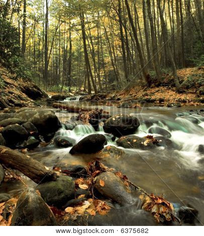 Middle Prong Trail Creek