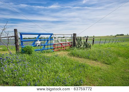 Texas Bluebonnet Field And Fence In Spring