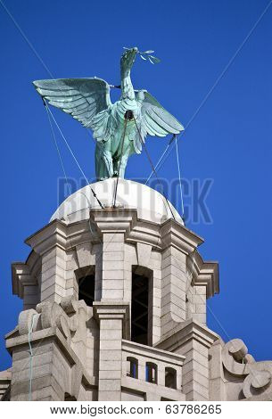 Liver Bird Perched On The Royal Liver Building