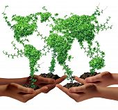Environment community and business development concept as a group of global ethnic people hands holding green plants with leaves shaped as the world as a metaphor for a growing international economy. poster