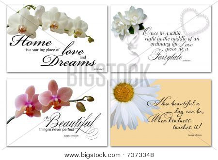 inspirational card vector