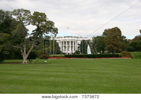 El césped de la casa blanca