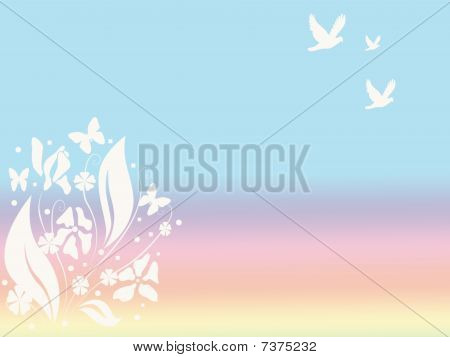 White Flowers on a Colorful Spring Background