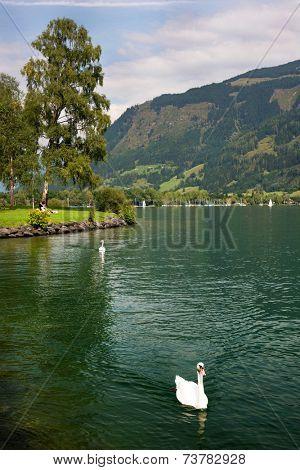 Zeller Lake, Zell am See, Austria, Europe poster