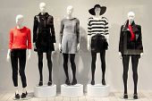 Five mannequins in a clothing store dressed in a fall style. poster