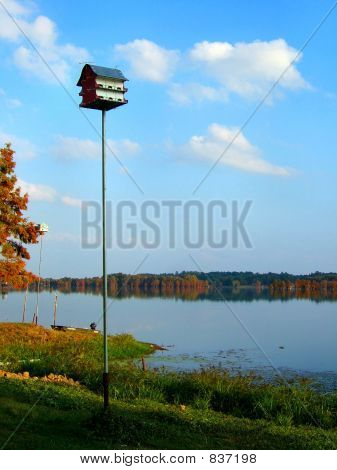 Birdhouse on Caddo lake