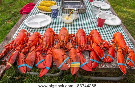 Steamed Lobsters on Picnic Table