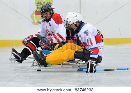 Three Sledge Hockey players