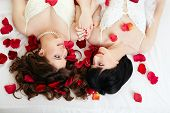Gay marriage. Top view of happy girls in bridal dresses poster