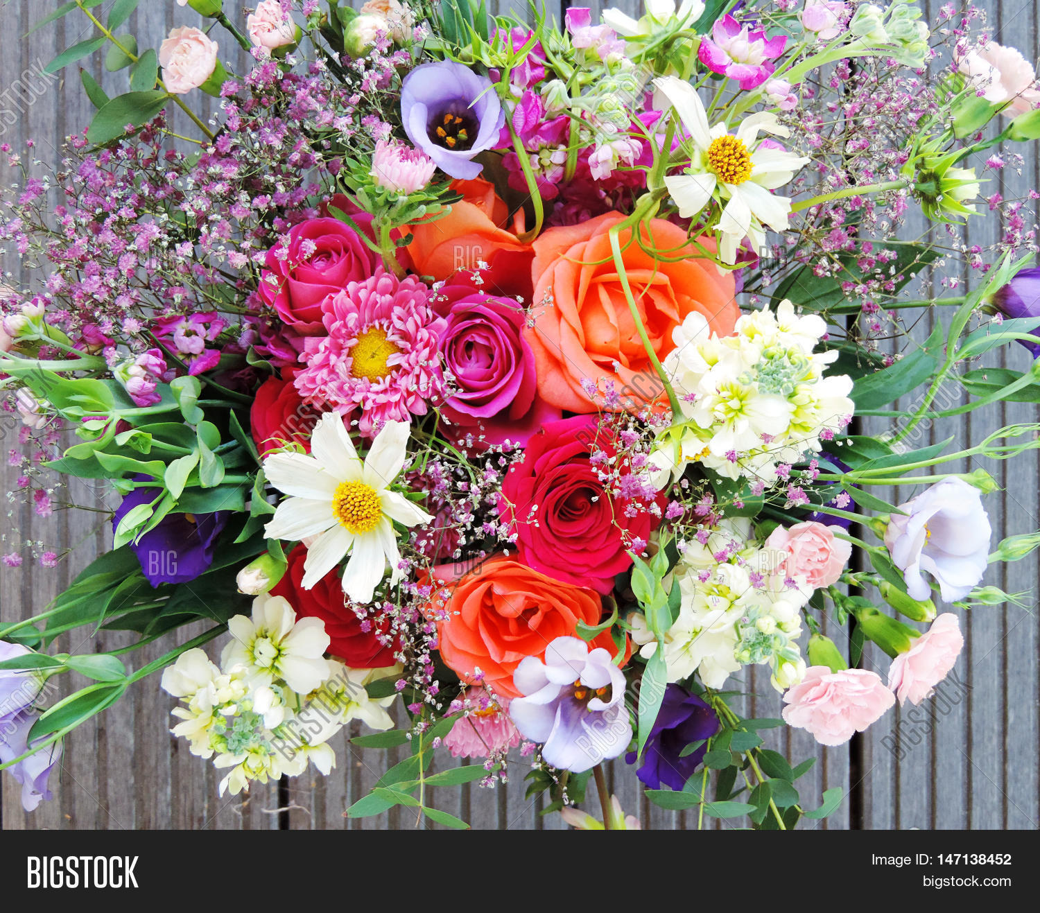 Multicolored Spring Image & Photo (Free Trial) | Bigstock
