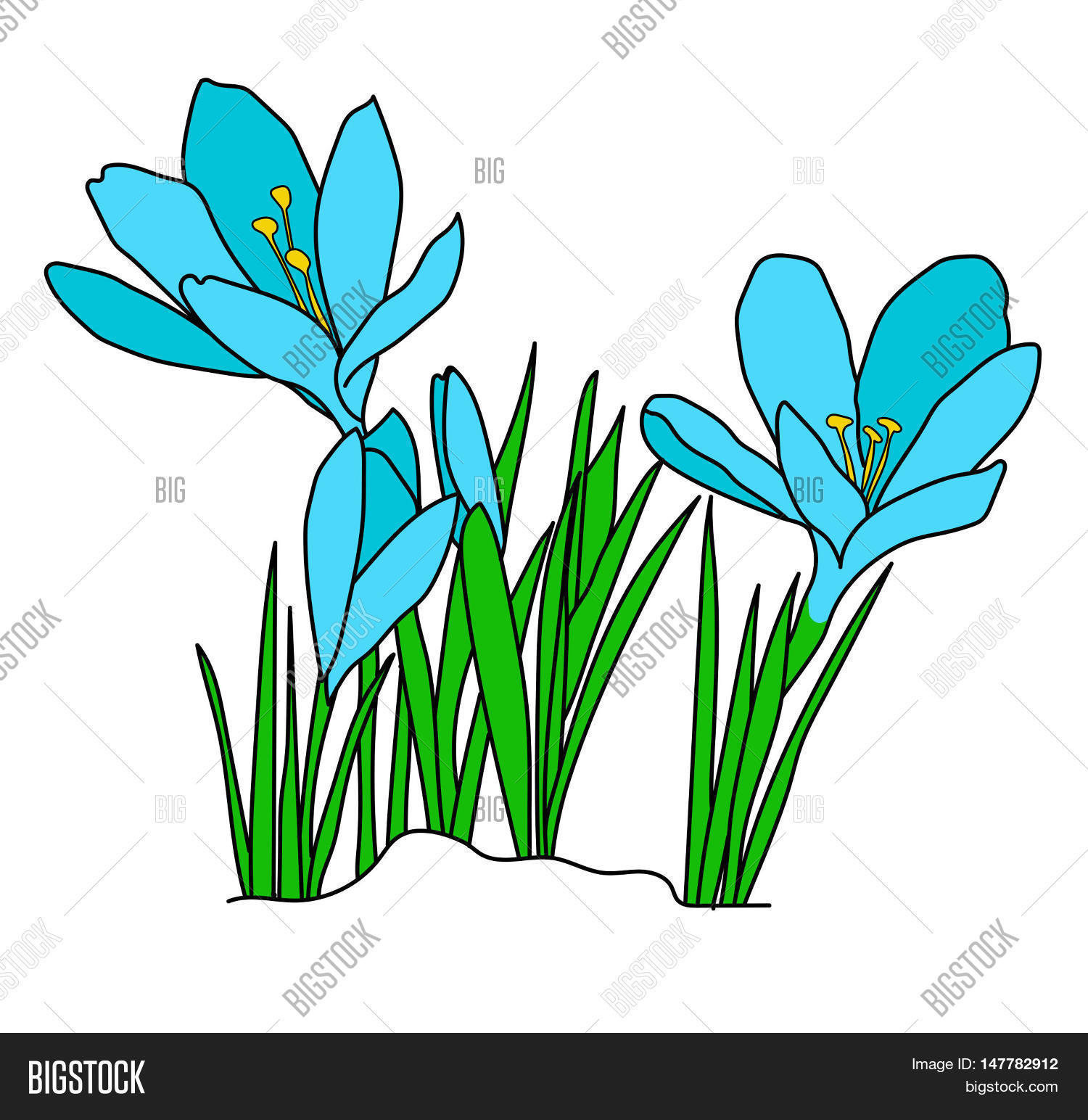 Crocuses Flowers Image Photo Free Trial Bigstock
