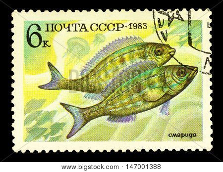 Russia - Circa 1983